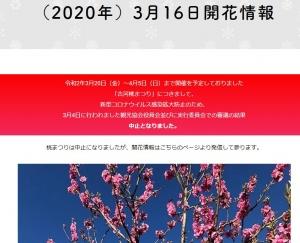 20200317_