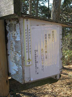 20110219_053